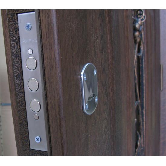 Арка улица полуторная с ковкой - Производитель RedFort - Входные двери